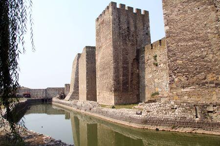 siervo: El agua verde en zanja siervo en la fortaleza de Smederevo, Serbia