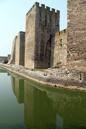 siervo: Reflejo en el agua greebn en zanja siervo en Smederevo Editorial