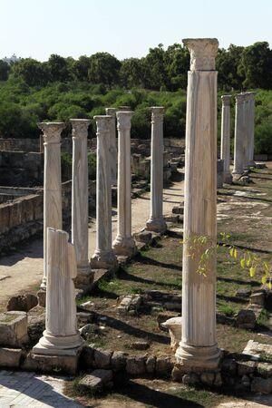kibris: Marble coilumns in Salamis, North Cyprus