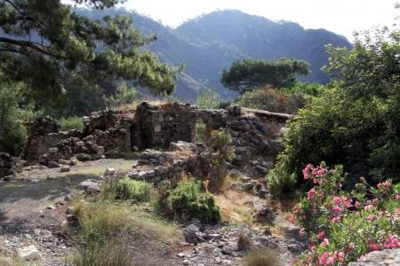 chimera: Ruins under trees near Chimera, Turkey Stock Photo