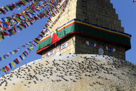bodnath: Birds on the big stupa Bodnath in Kathmandu, Nepal Stock Photo