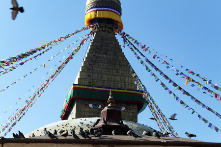 bodnath: Doves on the stupa Bodnath in Kathmandu, Nepal