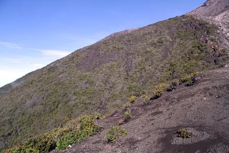volcano slope: Bush on the slope of volcano Kerinci in Indonesia