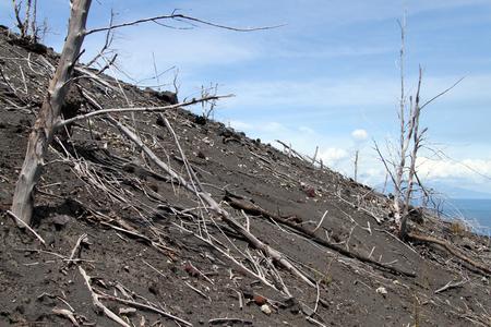 volcano slope: Slope of volcano Krakatau in Indonesia