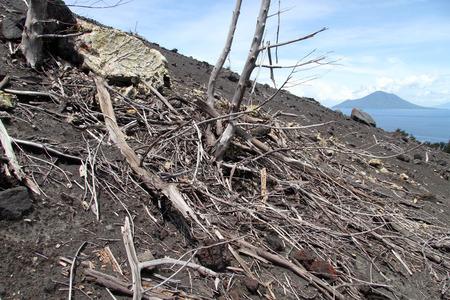 volcano slope: Slope of volcano Krakatau, and sea near Sumatra in Indonesia