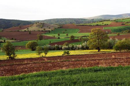 anatolia: Plowed land in Anatolia, Turkey