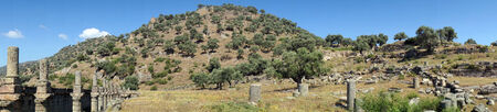Panorama of agora in ancient town Alinda, Turkey                             photo