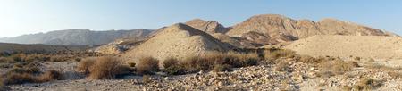 negev: Zin valley in Negev desert, Israel