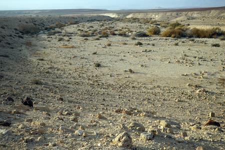 Wadi in Negev desert in Israel Stock Photo