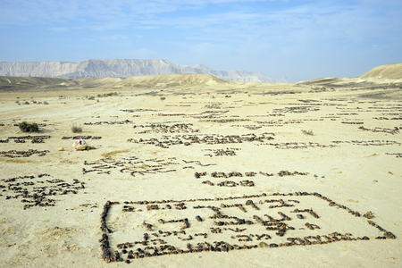 nahal: Stone pictures in Nahal Zin valley in Nehev desert, Israel