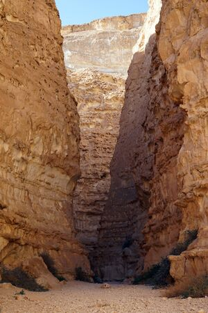 canyon negev: Inside Barak canyon in Negev desert in Israel