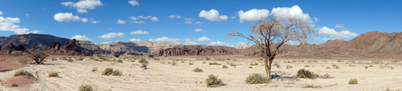 timna: Panorama in Timna park in Negev desert, Israel