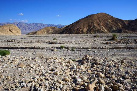 riverbed: Dry riverbed in Negev desert in Israel Stock Photo