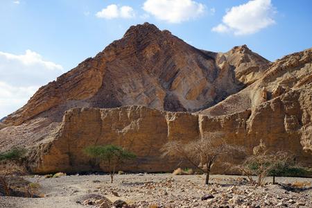 nahal: Nahal Shelomo near Eilat in Negev desert in Israel Stock Photo