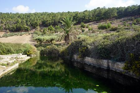 ein: Water in Ein Ivka spring in Israel