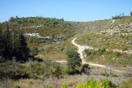 carmel: Senderos en el monte Carmelo, en Israel
