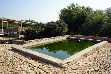 ein: Water from spring Ein Zur in stone bath, Israel
