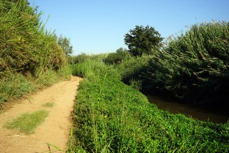 Footpath near Yarkon river in Tel Aviv, Israel photo