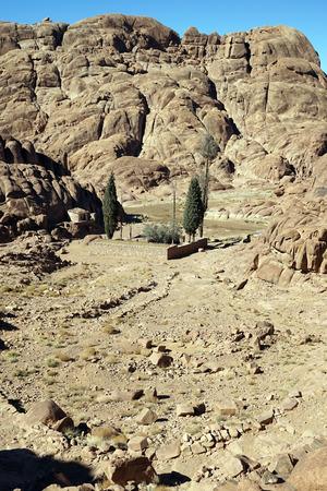 monte sinai: Small oasis on the mount Sinai in Egypt Foto de archivo
