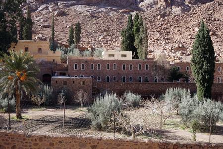 monte sinai: Jard�n en el monasterio sagrado del Monte Sina� Dios oprimidos