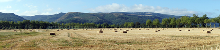 stubble field: Panorama of stubble field with straw in France Stock Photo