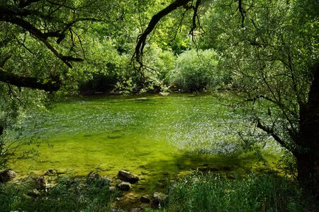 Green water in river Doubs in Switzerland