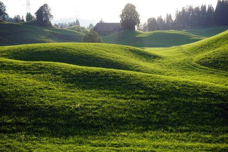 Track and grünen Hügel im ländlichen Raum der Schweiz