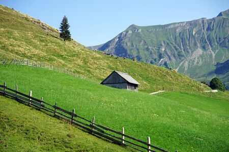 Shed on the green slope in mountain area of Switzerland