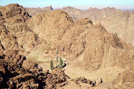 sinai: Small oasis on the mount Sinai in Egypt Stock Photo