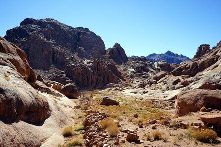 monte sinai: Acera y cantos rodados en el monte Sinaí en Egipto