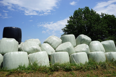 haycock: Haystacks with plastic cover on the field in France
