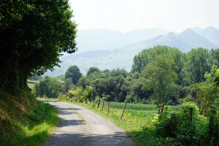 pyrenees: Dirt road and field near Pyrenees, France Stock Photo