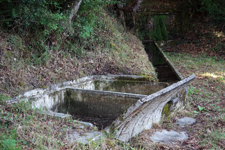 waterless: Dry spring basin in the forest Stock Photo