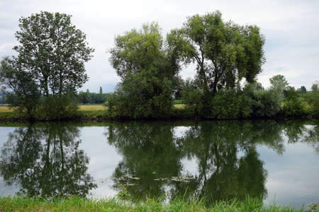 windless: Big trees and canal near Neuchatel lake in Switzerland