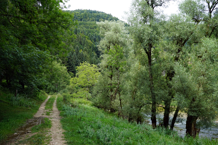 Track near river Doubs in Switzerland Stock Photo