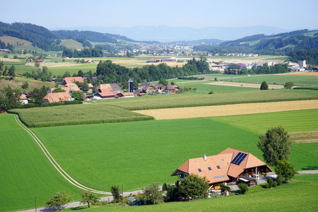 non cultivated: Green valley in rural area of Switzerland