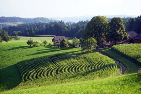 non cultivated land: Farm houses and fields on the slope of hill in Switzerland Stock Photo