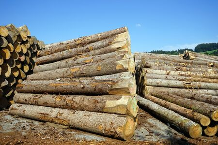 lumbering: Timber heaps in storage near factory in Switzerland Stock Photo
