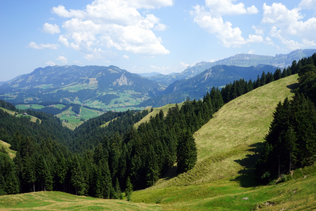 non cultivated land: Green valley in rural area of Swiss Alps, Switzerland