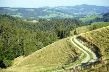 non cultivated land: Track on the slope of hill in rural area of Switzerland