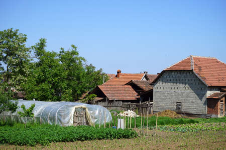 serbia: Farm house and shed in Serbia