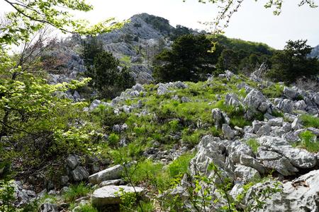 montenegro: Mountain area near Herceg Novi in Montenegro