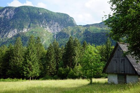wooden hut: Wooden hut in Triglav nationa park in Slovenia