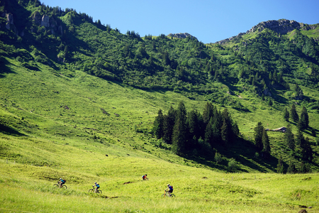 bicyclists: Bicyclists on the green slope of mount in Switzerland