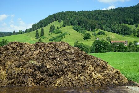 The heap of manure on the farm field in Switzerland