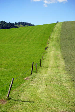 Fence on the green slope in Switzerland Stock Photo