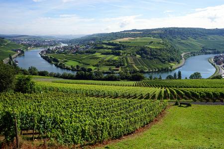 国境ルクセンブルクとドイツの Mosell 渓谷の景色