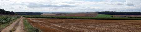 Farm fields after harvest in Luxembourg