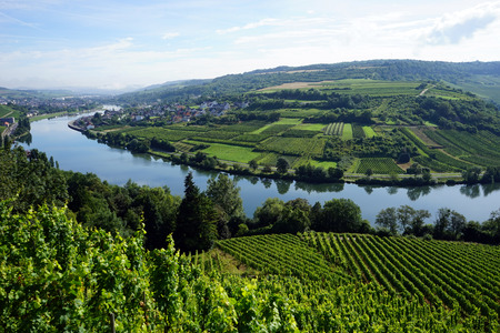 an agricultural district: View of Mosell valley on the border Luxembourg and Germany Stock Photo