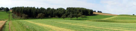 rural area: Panorama of farm fields in rural area of Germany Stock Photo